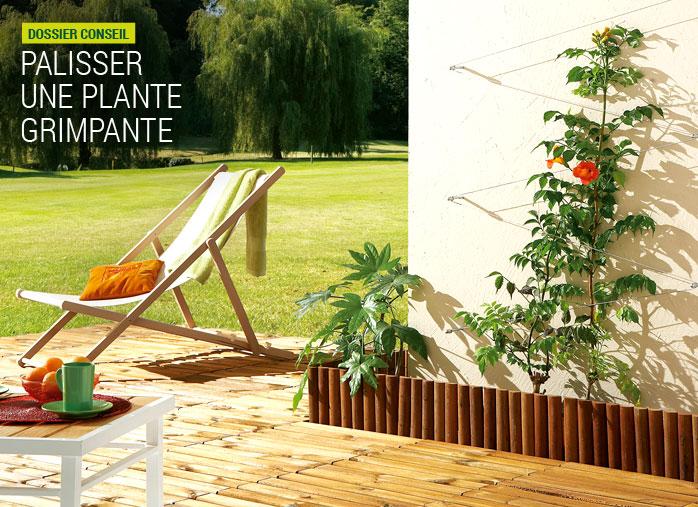 Kit de palissage nortene pour plantes grimpantes nortene - Support plante grimpante ...
