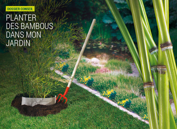 Barri re anti rhizomes pour bambou nortene for Quel arbre planter dans son jardin