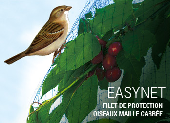 easynet pp filet de protection oiseaux maille carr e. Black Bedroom Furniture Sets. Home Design Ideas