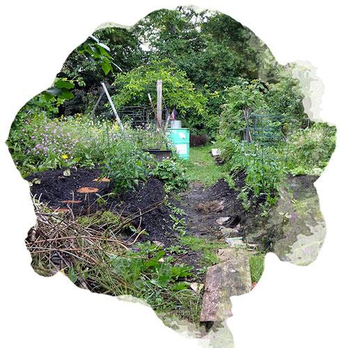Cinq choses savoir sur la permaculture nortene for Rendement permaculture