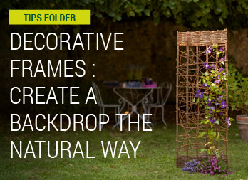 Decorative frames: create a backdrop the natural way