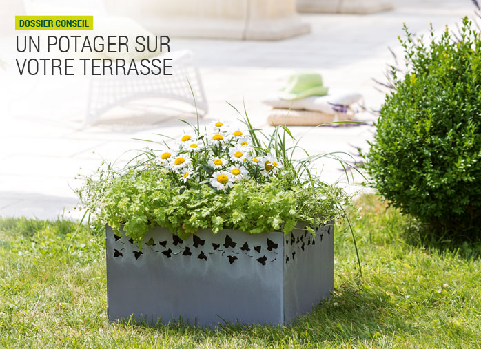 carr potager nortene un potager sur ma terrasse nortene. Black Bedroom Furniture Sets. Home Design Ideas