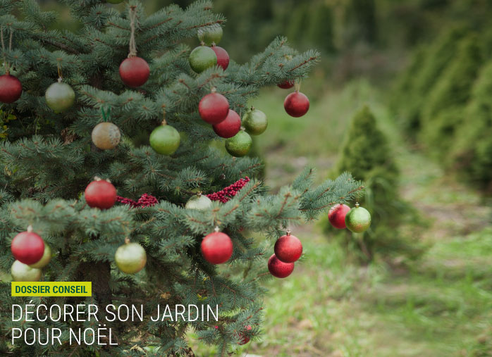 Comment Decorer Son Jardin Pour Noel Nortene