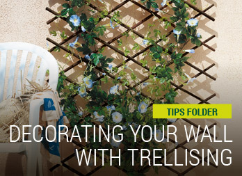 Decorating your wall with trellising
