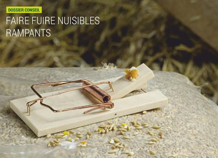 solutions pour faire fuir les nuisibles rampants nortene. Black Bedroom Furniture Sets. Home Design Ideas