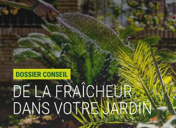 De La Fraicheur Dans Votre Jardin Pour L Ete Nortene