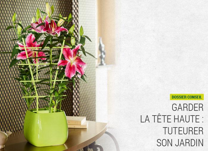 des tuteurs pour le maintien des plantes nortene. Black Bedroom Furniture Sets. Home Design Ideas