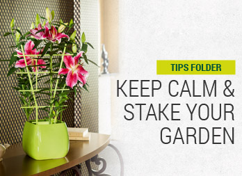 Keep calm, and stake your garden