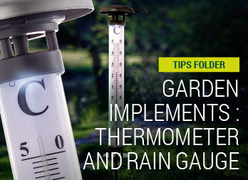 Garden implements: thermometer and rain gauge