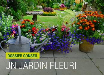 Comment avoir un jardin fleuri ? - Nortene