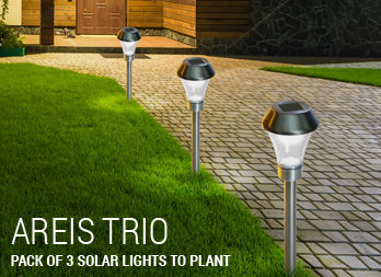 Pack of 3 solar lights to plant