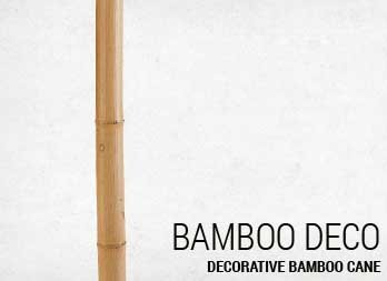 Decorative bamboo cane