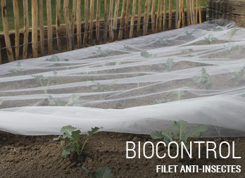 Filet anti-insectes