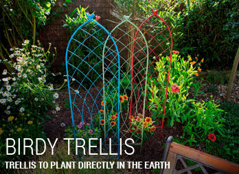 Trellis to plant directly in the earth