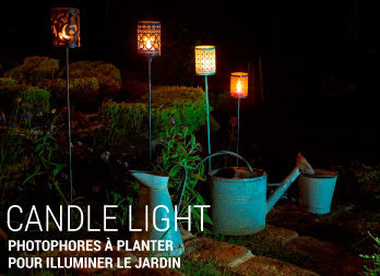 Photophores à planter pour illuminer le jardin
