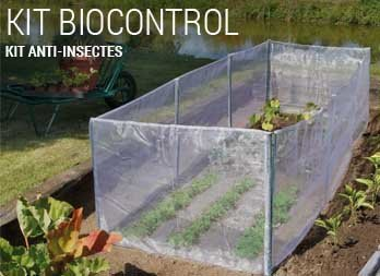 Kit anti-insectes