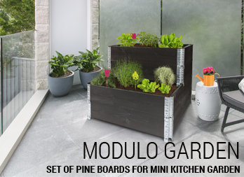 Set of pine boards for mini kitchen garden