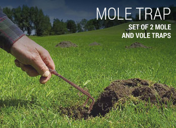 Set of 2 mole and vole traps