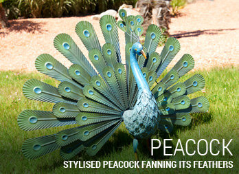 Stylised peacock fanning its feathers