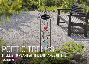 Trellis to plant at the entrance of the garden