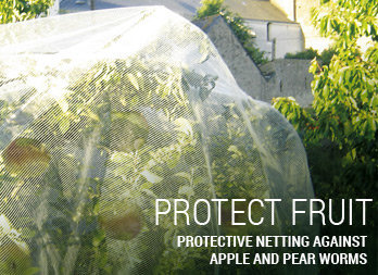 Protective netting against apple and pear worms
