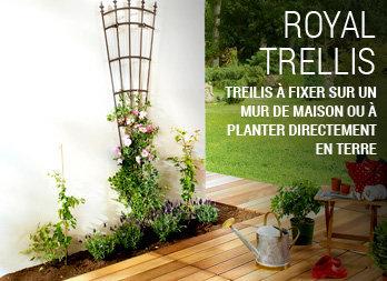 Treillis Pour Palisser Ses Plantes Grimpantes Nortene
