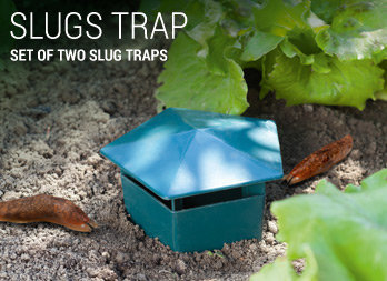 Set of two slug traps