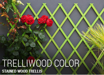Stained wood trellis