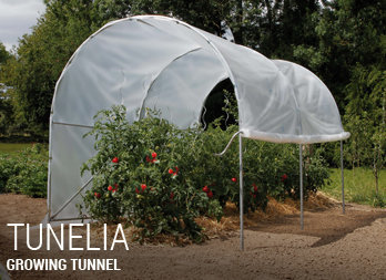 Growing tunnel