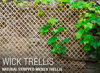 Natural stripped wicker trellis