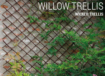 Wicker trellis