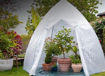grande serre d 39 hivernage pour les plantes en pots et de grande taille nortene. Black Bedroom Furniture Sets. Home Design Ideas