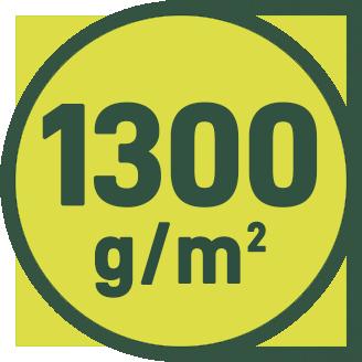 1300 g/m2