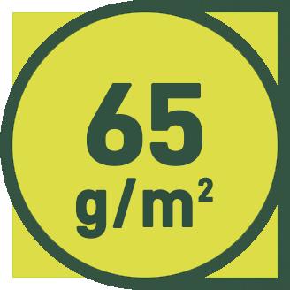 65 g/m2