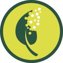 Biocompostable