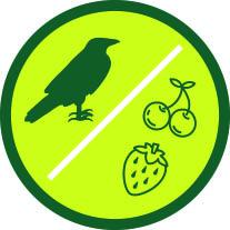 Anti pájaros