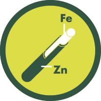 Hierro + Zinc