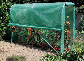 tomato greenhouse serre tunnel pour potager nortene. Black Bedroom Furniture Sets. Home Design Ideas