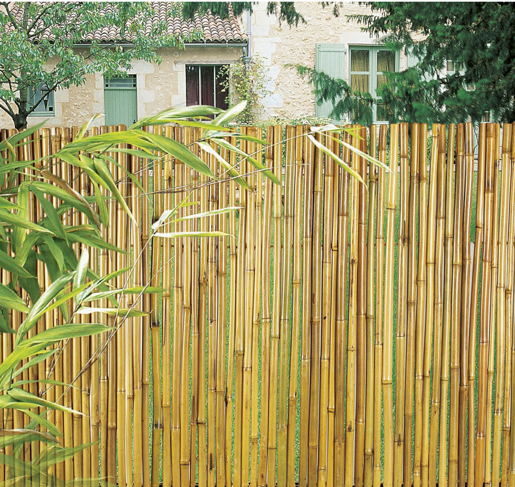 bambooflex 15 mm cl ture bambou flexible nortene. Black Bedroom Furniture Sets. Home Design Ideas